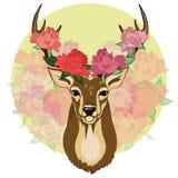 Cerfs communs avec des roses là-dessus andouillers du ` s et fond décoratif Photo stock