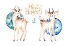 Cerfs communs d'aquarelle de Noël Illustration animale d'enfants de forêt mignonne de Noël, carte de nouvelle année ou affiche Bé Images libres de droits