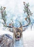 Cerfs communs d'imagination avec les andouillers décorés Scène d'imagination de vacances de Noël illustration stock