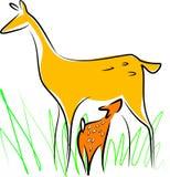 Cerfs communs de allaitement Images stock