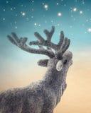 Cerfs communs de Noël Images stock