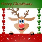 Cerfs communs de Noël Images libres de droits