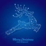 cerfs communs et étoile de Noël Image libre de droits