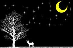 Cerfs communs et arbre dans la scène foncée et blanche avec des étoiles de noir et m Photos libres de droits