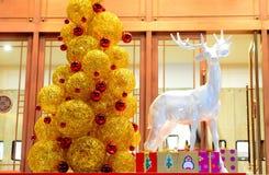 Cerfs communs et arbre de Noël Photos libres de droits