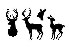 Cerfs communs et faon Silhouette de coupe de noir sur un fond blanc Main illustration de vecteur