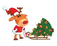 Cerfs communs et traîneau avec l'arbre de Noël Image stock