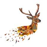 Cerfs communs polygonaux multicolores Photos libres de droits