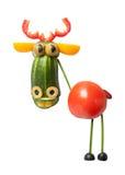 Cerfs communs végétaux drôles photo stock