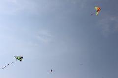 cerfs-volants Photos libres de droits