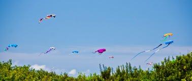 Cerfs-volants au-dessus des dunes des rivages d'océan Images libres de droits