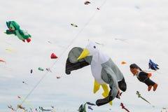 Cerfs-volants de vol Photos stock