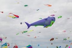Cerfs-volants de vol Photo stock
