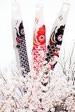 Cerfs-volants japonais de carpe photographie stock libre de droits