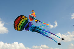 Cerfs-volants multi image stock