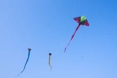 Cerfs-volants sur le ciel bleu Image stock