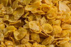 Cerial on white dish. Corn Flakes on white dish Stock Photography