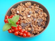 Cerials with chocolate and currants Stock Image