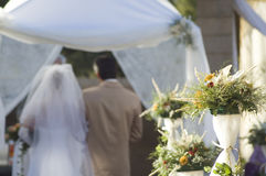 Cerimónia de casamento #3 Imagem de Stock Royalty Free