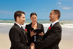 Cerimónia de casamento alegre Foto de Stock Royalty Free