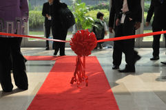 Cerimónia de inauguração Imagem de Stock