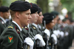 Cerimónia militar - os Países Baixos Foto de Stock Royalty Free