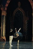Cerimônia-bailado adulto O Lago das Cisnes do príncipe preto da saia- fotografia de stock
