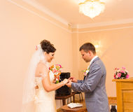 Cerimônia de casamento em uma pintura do escritório de registro, união Fotos de Stock Royalty Free