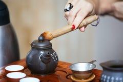 Cerimônia de chá chinesa Fotografia de Stock Royalty Free