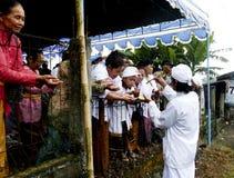 Cerimônia dos hindus Fotos de Stock Royalty Free