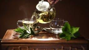Cerimonia di tè video d archivio