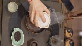Cerimonia di tè del cinese tradizionale Uomo che versa acqua calda archivi video
