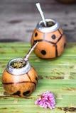 Cerimonia di tè del compagno Fotografia Stock