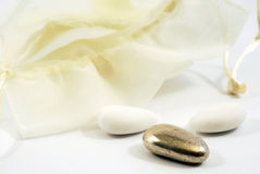Cerimonia nuziale d'argento Fotografia Stock Libera da Diritti