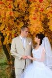 Cerimonia nuziale di autunno Fotografia Stock