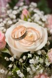 Cerimonia nuziale rings-2 Fotografie Stock