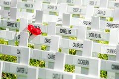 Cerimonia tradizionale di giornata della memoria Immagini Stock Libere da Diritti