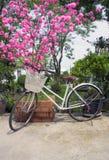 Cerise de floraison proche d'arbre de vieille bicyclette dans le printemps Photos libres de droits