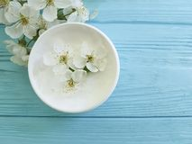 Cerise de floraison saine de crème hydratante de produit de traitement organique cosmétique crème de ressort sur une protection e Images stock