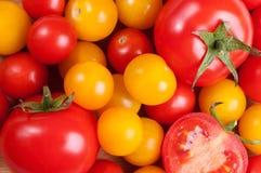 Cerise de tomate Photos libres de droits