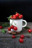 Cerise de tomate Photo libre de droits