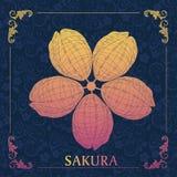 Cerise du Japon Sakura de vecteur Illustration Libre de Droits