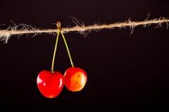 Cerise et corde sur le noir avec la bride Photos stock