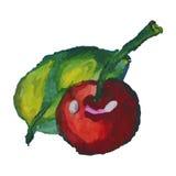 Cerise et feuille watercolor Photographie stock