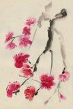 Cerise fleurissante. Source. Encre et balai. Photo stock