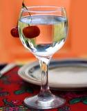 Cerise fraîche en glace Photographie stock