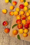 Cerise-prune Photographie stock libre de droits