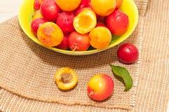 Cerise-prunes et abricots Photos libres de droits