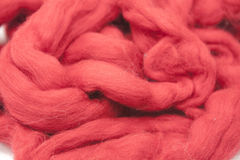 Cerise red piece of Australian sheep wool Merinos breed close-up on a white background Stock Images