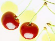 Cerise rouge Photographie stock libre de droits